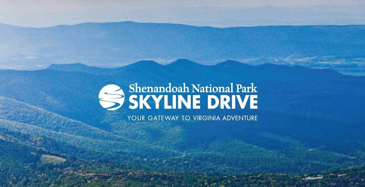 Skyline Drive in Shenandoah National Park Identity and Collateral-1